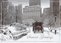 Moment in Time Holiday Cards